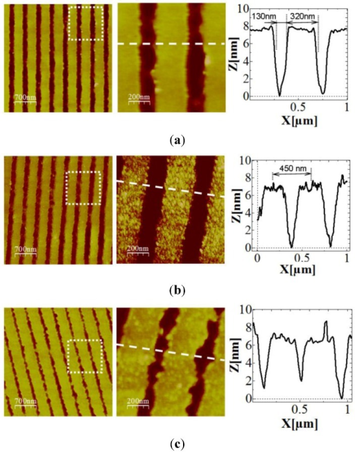 Atomic Force Microscopy (AFM) images of the grating chip (a) before, (b) after silicon nitride thin layer deposition and (c) after antibody functionalization. The grating structure is maintained after both the silicon nitride thin film and the organic layer deposition.