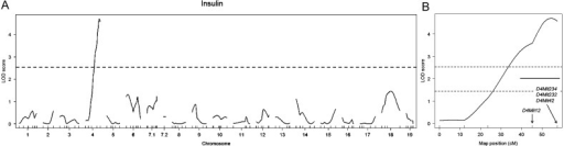 QTL mapping of plasma insulin levels. (A) The genome-wide LOD score plot for plasma insulin levels in BC Ay mice. A horizontal dotted line indicates the genome-wide threshold LOD score for significant linkage. (B) Identification of a significant QTL on distal chromosome 4. Horizontal dotted lines indicate the threshold LOD scores for significant linkage (P<0.05, upper line) and suggestive linkage (P<0.63, lower line). A horizontal short line indicates 95% CI for the QTL.