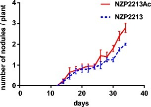 Nodule formation kinetics of the M. loti NZP2213 wild strain and NZP2213 released from A. castellanii (NZP2213Ac) determined as the number of nodules per plant. Each point represents the mean ± standard error of determinations in three independent sets of 20 plants
