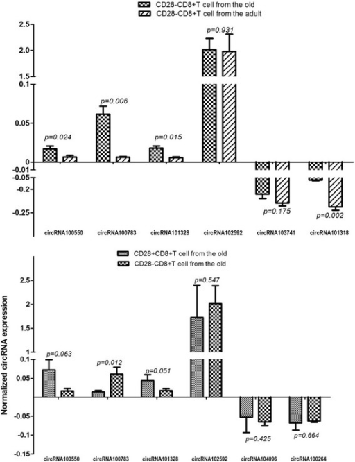 The intracellular validation of candidate circRNAs in C1 and C4. Validation of intracellular circRNA was performed using quantitative polymerase chain reaction (qPCR; in triplicate) in three randomly selected RNA samples. The level of intracellular expression of the validated circRNA was the average of these three samples. Prior to determination of the average, the normalized intracellular expression was calculated by the ratio of intracellular expression to microarray expression. Four up-regulated circRNAs (circRNA100550, circRNA100783, circRNA101328 and circRNA102592) and two down-regulated circRNAs with Top-2 Degree (circRNA103741 and circRNA101318) were validated in C1, respectively (a). Simultaneously, the same four up-regulated circRNAs and another two down-regulated circRNAs with Top-2 degree (circRNA104096 and circRNA100264) were validated in C4, respectively (b). Shown from the figure, only circRNA100783 is significantly differentially-expressed in both C1 and C4. Therefore, we supposed circRNA 1000783 might be a potential biomarker of immunosenescence