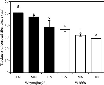 The thickness of the mechanical tissue of the N4 internodes culm in two japonica rice cultivars under different nitrogen rates. Different lowercase letters represent significant differences (P < 0.05) relative to the LN treatments for Wuyunjing23 and W3668, respectively