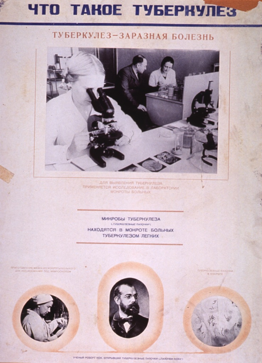 <p>Predominantly white poster with blue and tan lettering.  All lettering in Cyrillic script.  Title at top of poster.  Note below title states that tuberculosis is an infectious disease.  Visual images are b&amp;w photo reproductions.  Largest photo, below note, features a laboratory scene.  A woman looks into a microscope and a man and woman confer at a desk in the background.  Additional text below photo refers to tuberculosis microbes.  Smaller photos in lower portion of poster feature a woman working in a laboratory, a portrait of Robert Koch, and an enlarged view of some tuberculosis rods and microbes.  Publisher information at bottom of poster.</p>