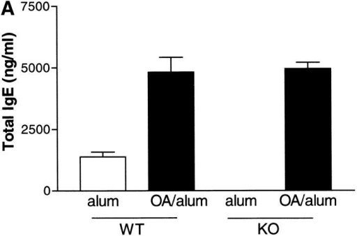 Effect of IL-9 deficiency on serum IgE levels. Mice were killed 24 h after the final OVA challenge, bled via cardiac puncture, serum collected, and analyzed by ELISA for total IgE (A) and OVA-specific IgE (B). Data are expressed as mean ± SEM; n = 4–13 per group.