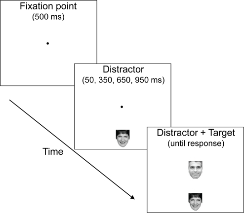 Trial sequence.A distractor appeared above or below fixation at random and was either the same as (compatible) or different than (incompatible) a subsequent central target. The distractor and the target were both either upright or inverted, depending on the version. Participants identified the central target on all trials by pressing one of two buttons.