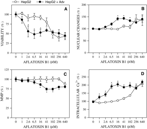 Aflatoxin B1-induced toxicity in upgraded HepG2 cells. Metabolically competent HepG2 cells (prepared by co-transduction with CYP1A2, CYP2C9 and CYP3A4 adenoviruses) or control HepG2 cells were treated for 24 h with increasing concentrations of Aflatoxin B1. Cell viability (a), nuclear changes indicative of apoptotic death (b), mitochondrial membrane potential (MMP) (c) and intracellular calcium concentration (d) were compared in both cell systems (*p < 0.01). Results are expressed as percentage of untreated cells