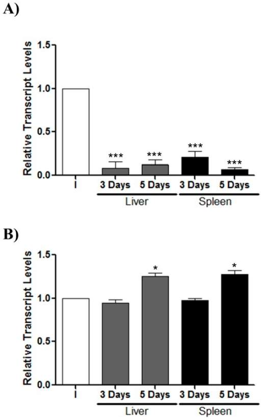 ompD expression in target organs from BALB/c mice infected with S. Typhimurium 14028 s.Bacteria were recovered from organs (liver and spleen) after three and five days post infection. The ompD (A) and ompW (B) transcript levels were measured by qRT-PCR and are indicated as relative transcript levels with respect to the levels of each gene in the bacterial inoculum (I) used for infecting mice (n = 3). Experiments were performed in biological and technical triplicate. Asterisks represent statistical differences between control and treated cells (* p≤0.05; *** p≤0.001). Values are mean ± SD.