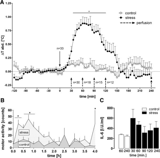 Tb, motor activity, and plasma IL-6 levels during novel environment stress or control situation in rats. (A) Novel environment stress (stress) induced a rise in body temperature (Tb). (B) This response was preceded and accompanied by increased motor activity (averaged cumulative activity over 15 min for each) but (C) no significant rise in plasma interleukin 6 (IL-6)-levels, when compared over time to unstressed control animals. Dashed black arrows indicate changes in the number of animals; this number of animals reduces with time because of animal groups being perfused at the indicated time points. n = 3 (30, 90, and 120 min) or 6 (60 and 240 min) for each group of perfusion (stress; control only for 60 and 240 min). For IL-6 n = 3 or 6 (60 and 240 min) samples were analyzed *P < 0.05.