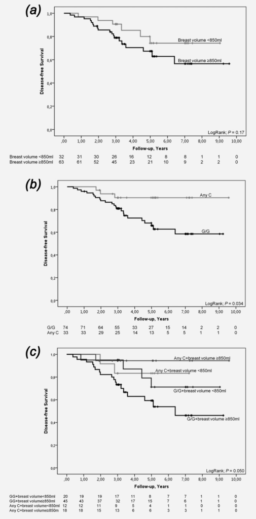 Kaplan–Meier estimates of breast cancer-free survival among chemotherapy-treated patients in relation to COX2 rs5277 genotype and breast volume. As this is an ongoing cohort, there are fewer patients with longer follow-up times. (a) In relation to breast volume (Log Rank; p = 0.17). (b) In relation to COX2 rs5277 genotype (Log Rank; p = 0.034). (c) In relation to breast volume and COX2 rs5277 genotype (Log Rank, 3 df; p = 0.050). Adjusted HR 8.99 (95% CI 1.14–70.89; p = 0.037).