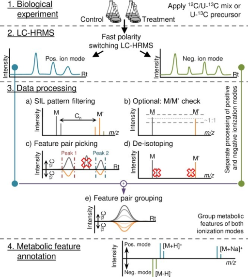 Illustration of the workflow for SIL-assisted tracer metabolismstudies, including LC–ESI-HRMS fast polarity switching.