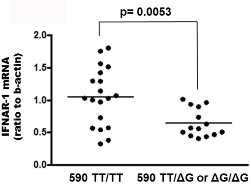 Levels of IFNAR-1 mRNA in PBMC from HCV-infected naїve subjects carrying IFNL4 ss469415590 TT/TT genotype vs patients carrying the ΔG allele.Results are expressed as ratio to beta-actin. The horizontal bar indicates median.