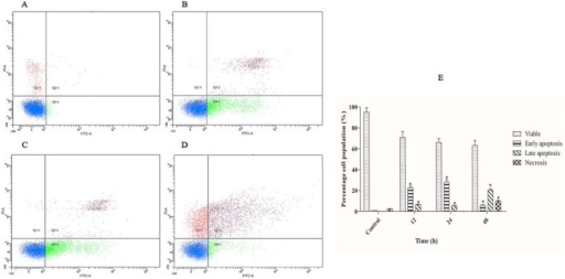 Time-dependent apoptosis rates of IC50 concentration of polycerasoidin-treated MCF7 cells after (B) 12, (C) 24 and (D) 48 h.(A) 0.1% DMSO treatment for 48 h was used as a vehicle control. (E) Representative bar chart of quadrant statistical analysis showing a significant elevation in the number of cells undergoing early and late apoptosis after 12 h. The data are shown as the means ± SEM. Values are statistically significant at *P<0.05.