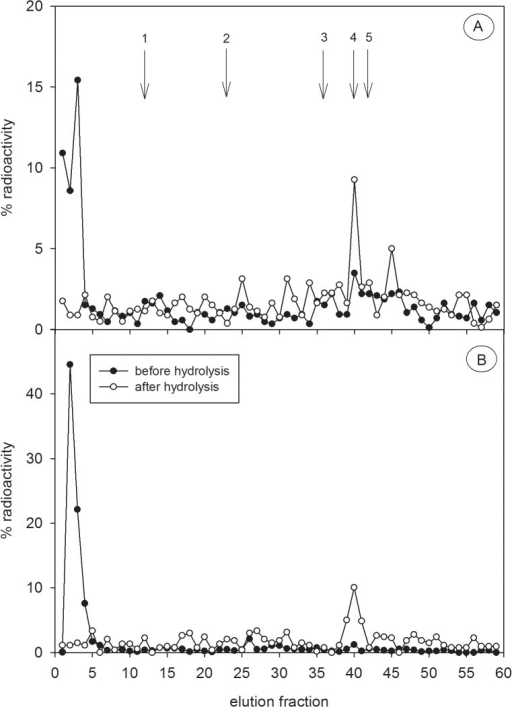 HPLC profiles of 3H-testosterone metabolites.3H-testosterone metabolites were analysed in non-hydrolysed (black circles) and hydrolysed (white circles) faecal extracts of one captive male (A) and one captive female (B) spotted hyena. Extracts were separated by RP-HPLC and then radioactivity of each fraction was analysed. Radioactivity is presented as a percentage of the overall eluted activity. The arrows represent the elution positions of reference standards cortisol (1), corticosterone (2), testosterone (3), epiandrosterone (4) and dihydrotestosterone (5), as detailed in Fig 1.