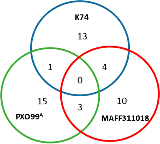 A Venn diagram illustrating the number of TALEs sharing identical RVD strings among Xoo strains K74, PXO99A and MAFF311018.
