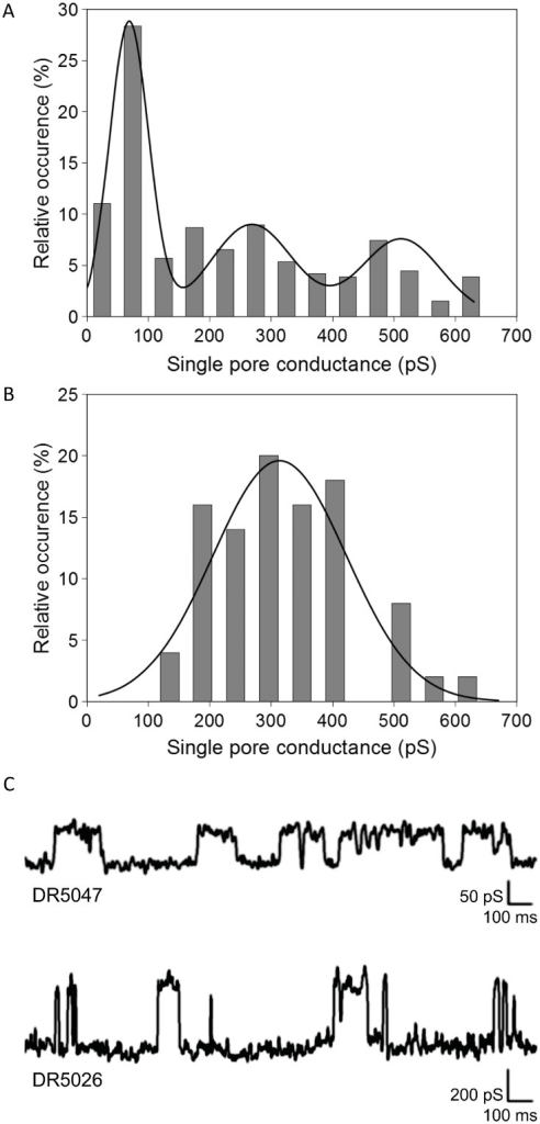 Conductance.Conductance of DR5047 (A) and DR5026 (B) single pores measured in 1M KCl, 10 mM Tris, pH 7.4 at membrane potential of 45 mV. The histograms of different conductance states were fitted with Gaussian functions. C. Representative single channel recordings of DR5047 and DR5026 in planar lipid membranes.