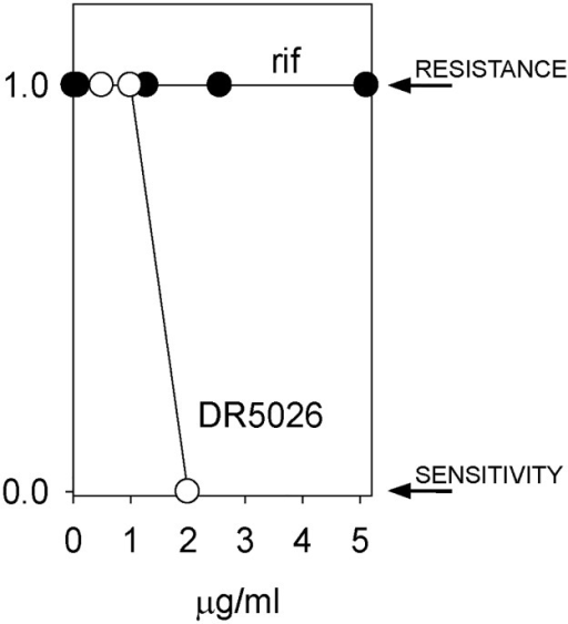B. subtilis 168 develops resistance against rifampicin (rif) but not against DR5026.B. subtilis was incubated with subcytotoxic concentrations of rif (starting at 0.01 mg/L; MIC 0.06 mg/L) and DR5026 (0.5 mg/L MIC ~ 3 mg/L) and grown for 24 h. Then, aliquots of the cultures were transferred to new tubes with fresh medium and a two-fold increased concentration of the active compound. A binary representation is shown; 1 indicates growth of the cells, i. e. their resistance to the respective compound; 0 represents lack of growth—the cells were sensitive to the compound and no resistant cell appeared within the time frame of the experiment. The experiment was conducted in three biological replicates with the same results.