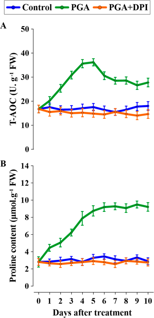 Effects of H2O2 elicited by poly-γ-glutamic acid (γ-PGA) on (A) total anti-oxidative capacity (T-AOC) and (B) proline content.