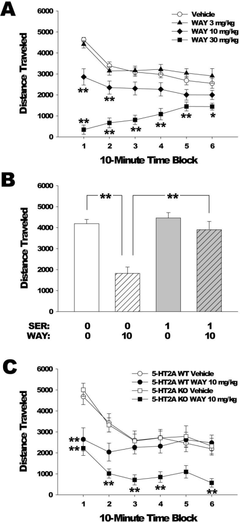 Effects of WAY-161,503 on locomotor activity. (a) Dose response of WAY 161,503 effects on distance traveled (in cm). Mice used were male C57BL/6J. Data are mean±SEM. **p<0.01, Dunnett's test vs vehicle control. (b) Effect of pretreatment with SER-082 on the locomotor response (measured as distance traveled) to WAY 161,503 during the first 10 min of testing. Mice used were male C57BL/6J. Doses are in mg/kg. Data are mean±SEM. **p<0.01, Tukey's test. (c) Effect of 5-HT2A gene deletion on the locomotor response to vehicle or 10 mg/kg WAY 161,503 in male and female 5-HT2A WT and KO mice. Data are mean±SEM. **p<0.01, Tukey's test vs 5-HT2A WT vehicle.