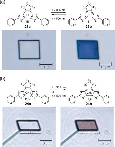 Photoinduced color and shape changes of single crystals of (a) 23a and (b) 24a upon irradiation with UV and visible light.