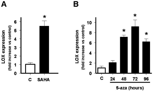 Effect of the histone deacetylases inhibitor SAHA and the demethylating agent 5-aza-2′-deoxycytidine on LOX mRNA levels.A) A673 cells were incubated in absence (C) or presence of SAHA 1 µM for 24 hours and the levels of LOX and TBP (reference gene) mRNAs quantified by multiplex real time qRT-PCR. LOX mRNA levels were normalized to that of TBP and referred to unstimulated control (C) cells, which were arbitrary set to 1. The figure shows the data (mean±SD) of three independent experiments done in triplicate. The figure shows the mean±SD of one out of two independent experiments done in duplicate (*P<0.01 vs control). B) A673 cells were incubated in the absence (C) or presence of 5-aza-2′-deoxycytidine 1 µM for 24, 48, 72 or 96 hours and the levels of LOX and TBP (reference gene) mRNAs quantified by qRT-PCR and analysed as above. The figure shows the mean±SD of two independent experiments done in duplicate (*P<0.01 vs control). Both SAHA and 5-aza-2′-deoxycytidine produce a significant increase in the levels of LOX mRNA in A673 cells.