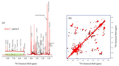 One-dimensional (a) and two-dimensional (b) 1H nuclear magnetic resonance spectrum of bronchoalveolar lavage fluid (BALF) (red) and mini-BALF (mBALF) (black). Peaks corresponding to various small molecular weight metabolites were identified and are shown in the figure. ppm, parts per million.