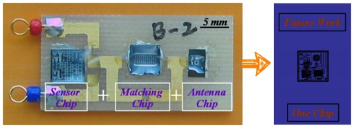 The multi-chip packaged smart microsensor and the concept diagram of one chip.