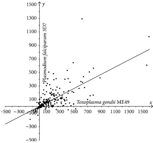Plot of protein length extensions in T. gondii ME49 versus P. falciparum 3D7 relative to their orthologs in Synechocystis sp. PCC 6803. Differences in lengths between sporozoan and cyanobacterial orthologous proteins are plotted as follows: T-S on the x-axis, P-S on the y-axis.