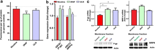 Effects of CSE on ABC efflux transporter expression and functionality in hCMEC/D3 cell line. Cells were exposed to nicotine (100 ng/mL) or CSE derived from 3R4F or ULN cigarettes. a P-gp efflux activity was determined by intracellular accumulation of rhodamine123 (a P-gp substrate) efflux, as an indirect correlate of P-gp activity n = 3/condition and replicated twice. b Transcriptome analysis of ABC efflux transporters, ABCB1 (P-gp) and ABCC4 (MRP4) following treatment (n = 6 biological replicates); c RT-PCR analysis of mRNA expression of P-gp and ABCC4 in hCMEC/D3 cells (n = 6 biological replicates); western blot analysis of transporter protein expression (n = 6 biological replicates). Representative western blots were shown with actin as a loading control. Data were expressed as mean ± SEM (fold change over control). *p < 0.05, **p < 0.01, vs. control.