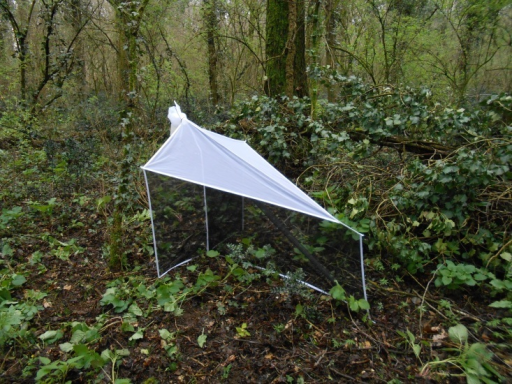 Malaise trap in an oak-hornbeam forest in north-eastern Italy.