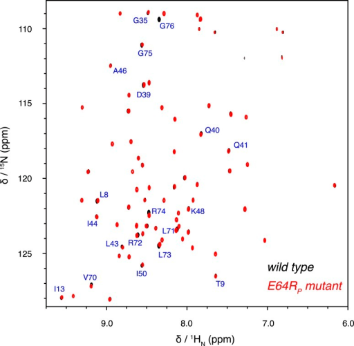 Overlay of 2D NMR spectra for wild type K63-Ub2 and E64RP mutant at 50 µM with distal unit 15N-labeled.Residues with relatively large chemical shift differences (>0.01 ppm) are labeled.DOI:http://dx.doi.org/10.7554/eLife.05767.022