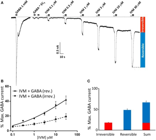 Ivermectin modulation of wild type α1β2γ2L GABAARs. In this and subsequent figures, all displayed traces were recorded from HEK293 cells expressing WT or mutated α1β2γ2L receptors using whole cell recording, and the durations of ivermectin and GABA applications are indicated by gray and black bars, respectively. (A) Sample recording showing the effect of repeated applications of EC3 GABA together with increasing concentrations of ivermectin at 1 min intervals as indicated. A current response to saturating GABA from the same cell is also shown. (B) Averaged ivermectin concentration-response relationships from 4 to 5 cells, with error bars shown as SEM. Ivermectin-induced reversible and irreversible currents, measured as shown in (B), are plotted separately as circles and squares, respectively. (C) Mean saturating magnitudes of reversible and irreversible ivermectin-modulated currents (defined as indicated in A), and their sum, plotted as a percentage of the saturating GABA-activated current. Mean GABA EC50, nH and Imax values for this and all other constructs are provided in Table 1.