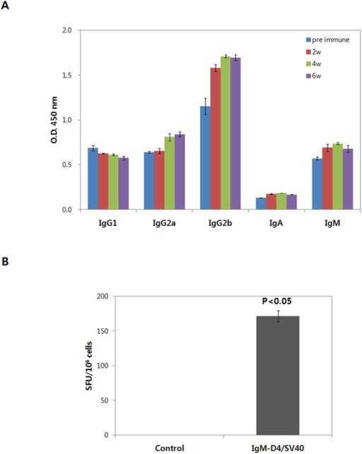 Immune response in mice immunized with IgM-D4/SV40 DNA vaccine.(A) Antibody analyses of IgG subclass after immunization with IgM-D4/SV40 DNA vaccine using EP delivery. The level of IgG subclass was measured by ELISA (1:100 dilutions). (B) DNA vaccination induces IFN-γ responses. Splenocytes from immunized mice were collected 8 weeks after first immunization, cultured in the presence of PA-D4 protein, and IFN-γ level measured by ELISPOT. Values are means ± standard deviations. P<0.05 compared to control.