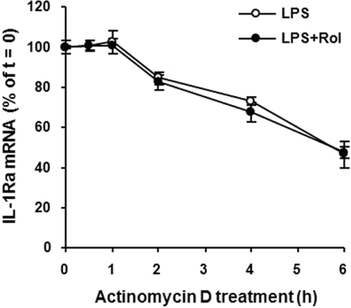 Rolipram does not alter sIL-1Ra mRNA stability in LPS-stimulated macrophages.Mouse peritoneal macrophages were treated with LPS (10 ng/ml) in the presence or absence of 10 μM rolipram for 3 h, followed by the addition of actinomycin D (10 μg/ml) to inhibit RNA transcription. The levels of sIL-1Ra mRNA were measured at 0, 0.5, 1, 2, 4 and 6 h after actinomycin D addition by real-time PCR. The amounts of sIL-1Ra mRNA were normalized to GAPDH mRNA levels. Values are expressed as percent of total sIL-1Ra mRNA at the time of actinomycin D addition. Data are the mean ± SEM (n = 4–6).