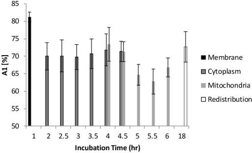 Distribution of A1 as a function of different incubation time. At 1 hour of incubation, because only trace of Photofrin® was taken up by the cells, short lifetime components such as autofluorescence and system response may contribute more signal than Photofrin® itself. As the intracellular Photofrin® concentration increased, the short component decreased from 81% to 65%. It should be noted that the A1 increased after prolonged incubation.