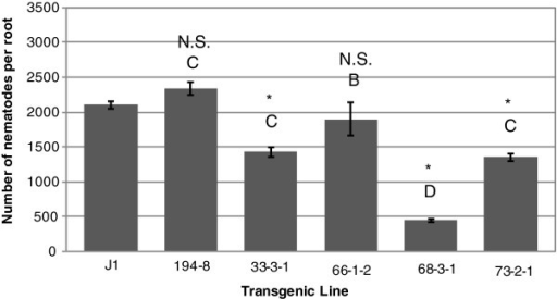 Inhibition of root lesion nematodes in roots of co-transformed somatic embryos of genotype J1. Nematode infestation is expressed as the number of nematodes recovered from cultures initiated using 100 nematodes per rooted embryo. Nematodes were recovered per root for each transgenic line after two months of in vitro co-culture in the dark. Bars represent mean of three replicates (Error bars=S.D). Significant differences from controls are denoted with *. Two lines are significantly different whenever they have no letters in common. Comparisons are considered significant whenever p<0.05.