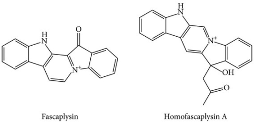 Structures of fascaplysin and homofascaplysin A.