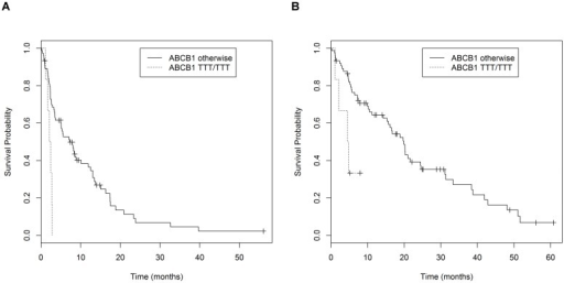 Survival curves.(A) Patients grouped according to the ABCB1 3435C/T, 1236C/T, 2677G/T haplotype; median PFS was 2.4 months for homozygous carriers of the TTT haplotype and 8.4 months for other cases (P = 0.001). (B) Patients grouped according to the ABCB1 3435C/T, 1236C/T, 2677G/TA haplotype; median OS was 4.6 months for homozygous carriers of the TTT haplotype and 19.6 months for other cases (P = 0.005).