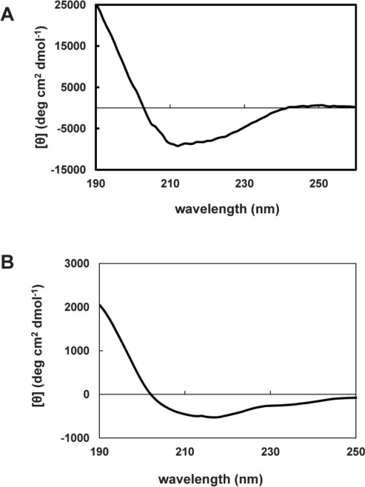 Circular dichroism spectra for Sfβgly-N and Sfβgly-C.Purified samples of 0.22 mg/mL Sfβgly-N (A) and 0.25 mg/mL Sfβgly-C (B) prepared in 10 mM potassium phosphate buffer, pH 6.9, were used for spectrum determination at 25°C (n = 8 reads).