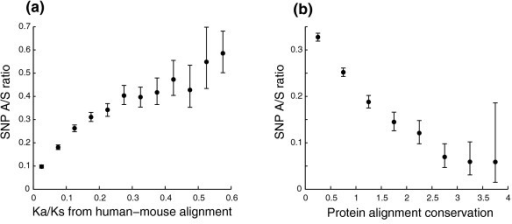 The SNP A/S ratio is a good measure for evolutionary constraints. Error bars represent 95th percentile confidence intervals from bootstrap resampling. (a) SNP A/S ratios correlate with Ka/Ks ratios from human-mouse alignments. Proteins were grouped into bins of equal intervals (interval = 0.05) according to their Ka/Ks ratios, and the SNP A/S ratio was calculated for each bin. (b) SNP A/S ratios correlate negatively with residue conservation scores from protein sequence alignments. All residues were grouped into bins of equal intervals (interval = 0.5) according to their position specific alignment information taken from PSI-BLAST alignment profiles, and the SNP A/S ratio was obtained for each bin.
