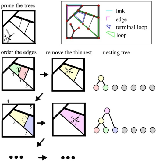 Hierarchical decomposition and nesting trees: Algorithm.The first step consists of pruning all tree-like components of the graph. In the second step we order the list of graph edges based on their width. Here we mark the 5 thinnest edges, ordered based on their weight. In the third step, we remove the weakest edge from the graph. Here this step will result in joining the green with the red loop, to form the yellow facet. The loops are represented as color coded nodes in the nesting tree. We then repeat steps 2 and 3 iteratively, to sequentially remove every edge, and as a consequence, gradually join every loop.