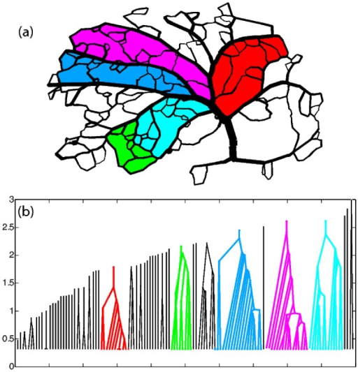 Digitized arterial vasculature of rat neocortex and corresponding nesting tree representation.(a)The arterial network forms a planar graph. Different segments of the network, as identified by hierarchical decomposition are represented by different colors. (b) Nesting tree of the digitized network. the highlighted segments of the network are color-coded.