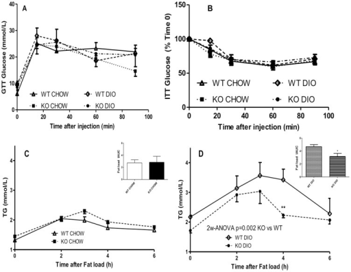 Metabolic response to glucose and insulin tolerance tests and postprandial lipid clearance in C5aRKO mice.(A): Plasma glucose levels following an intraperitoneal injection of glucose in WT (open symbols) and C5aRKO (solid symbols) mice after 13 weeks of low fat CHOW or diet-induced obesity (DIO) diet for n = 6–7 mice per group. (B): Plasma glucose levels following an intra-peritoneal injection of insulin in WT (open symbols) and C5aRKO (solid symbols) mice after 13 weeks of CHOW or DIO diet for n = 6–7 mice per group. Triglyceride (TG; C and D) postprandial lipid clearance following an oral fat load for WT (open symbols), C5aRKO (solid symbols) mice on CHOW (C) and diet-induced obesity (DIO) (D) diets for n = 5 mice per group. Results are presented as means ± SEM; data are analysed by 2-way RM-ANOVA followed by Bonferroni post-test for individual time point differences, where *P<0.05, and **P<0.001 for KO vs. WT and by t-test for the incremental area-under-the curve (IAUC), where *P<0.05 vs WT on the same diet.