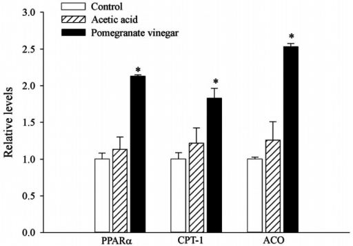 combination effect of pv on mrna levels of ppar u03b1  cpt
