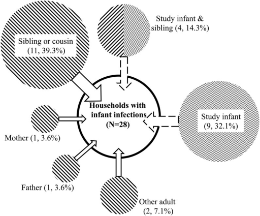 Distribution of primary cases for the 28 household episodes linked with the study infant infection in rural Kenya. Only the first household episodes/outbreaks involving the study infants are shown. The diagonal and zigzag lines shading the circles indicate outside- and within-household acquisition of the infant infections, respectively, and the area of the circle is in proportion to the number of cases in each category.