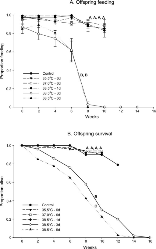Feeding and survival of Cimex lectularius nymphs.The proportion feeding (A) and survival (B) of Cimex lectularius nymphs from previously heat treated parents are shown. Each cohort began with 50 nymphs, and all were given the opportunity to feed every 14 days. Feeding (mean ± SE) and survival were recorded until an adult appeared in all boxes in a treatment or all nymphs in a cohort were dead. Control = 22.0°C and d = days. Different letters denote significant differences in feeding or survival between treatments (p < 0.05).