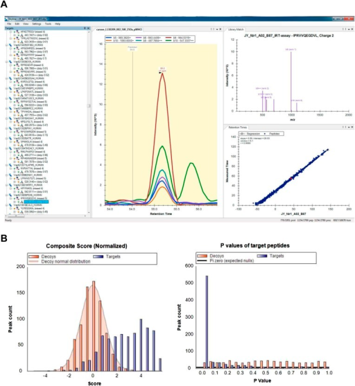 Visualization and analysis of SWATH-MS HLA peptidomic data in Skyline.Skyline is a free open-source software for targeted data analysis of various types of peptidomic data. It specifically facilitates manual and automated analysis of SWATH data and other data-independently acquired MS data using assay libraries. The software itself can be downloaded from the website: http://skyline.maccosslab.org. (A) Skyline-daily or Skyline v2.6 was used to import HLA peptide SWATH assay libraries, and to import, extract, and visualize SWATH HLA peptidomic data. (B) The 'Advanced Peak Picking Models' was used to work with decoy transition groups and for large-scale, automated SWATH data analysis. For more information, see Schubert et al. (2015b).DOI:http://dx.doi.org/10.7554/eLife.07661.028