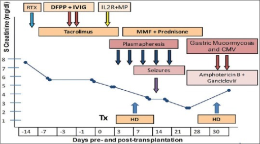 Timeline of events during course of illness. (RTX - Rituximab, DFPP - Double filtration plasmapheresis, IL2RA - Interleukin 2 receptor antagonist, MP - Methyl prednisone, HD - Hemodialysis)