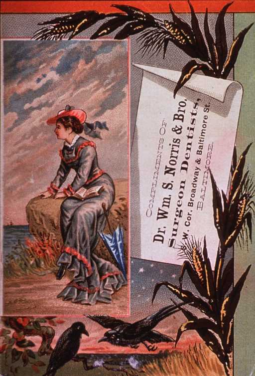 <p>Trade card for William S. Norris &amp; Bro., surgeon dentists of Baltimore.  Showing an autumnal scene.</p>