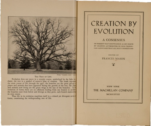 <p>Image of title page and frontispiece &quot;Tree of Life.&quot;  Frontispiece is a photograph of a massive, leafless, tree with branches which represents the divergence of evolution in forms of life.</p>