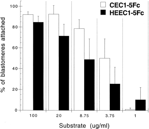 Xenopus blastomeres adhere similarly well to both CEC1–5Fc and HEEC1–5Fc proteins. Blastomeres isolated from Xenopus animal cap tissue explants were allowed to adhere to different amounts of HEEC1–5Fc, CEC1–5Fc, or BSA. The results shown are the average of four independent experiments. Black bars, HEEC1–5Fc protein; white bars, CEC1–5Fc protein. Note that adherence of blastomeres to BSA alone is negligible, and therefore does not appear in the graph.