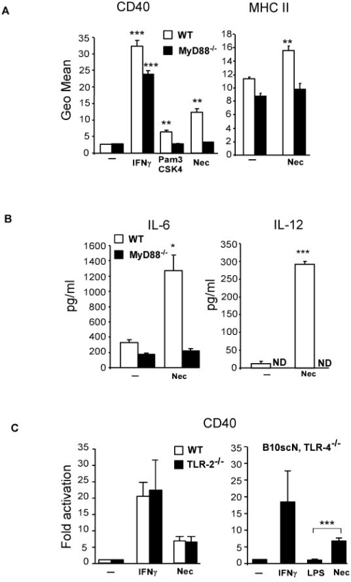 Microglial response to necrotic neurons is MyD88-dependent. (A) Microglial cells derived from MyD88-deficient mice were stimulated with necrotic HT22 cells for 24 hours and the expression of CD40 and MHC class II was assessed and compared to that of wild type cells. Pam3CSK4 is a TLR-2 ligand; ND, non-detectable. (B) The levels of IL-6 and IL-12 were quantified in the supernatants of microglial cell cultures by ELISA. (C) Induction of CD40 expression in TLR-2 or TLR-4 deficient microglia stimulated with necrotic neurons. LPS is a specific ligand for TLR-4. Results are shown as mean ± SD of three independent experiments or are representative of at least two experiments. *** p < 0.001; **p < 0.01 and * p < 0.05.